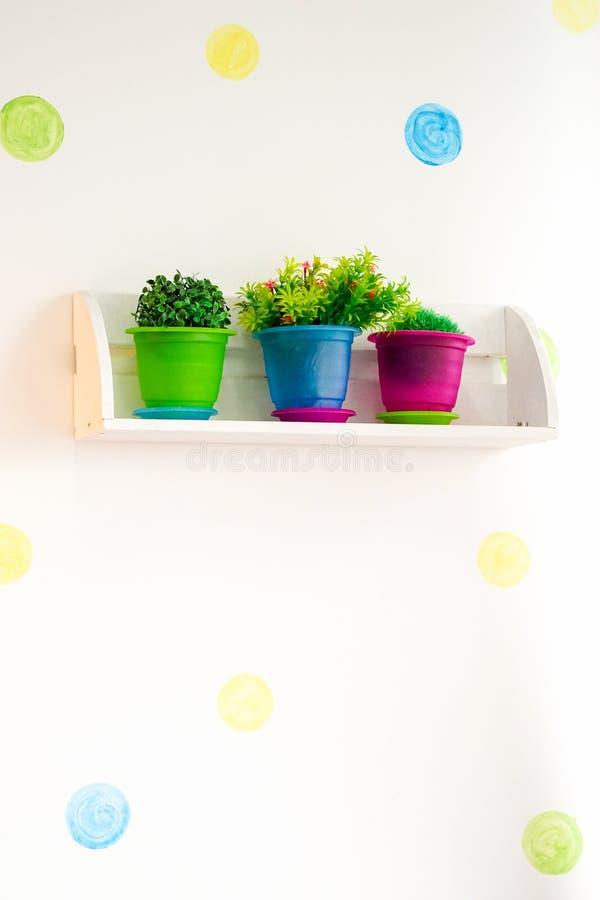 Цветки в баках с коробками цвета на полках на предпосылке стены стоковое изображение rf