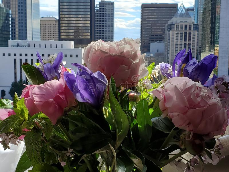Цветки в предпосылке города окна стоковые изображения rf