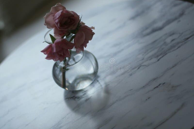 цветки в случае если стоковая фотография