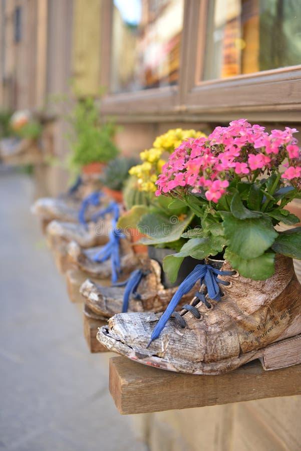 Цветки в старых ботинках стоковые фотографии rf