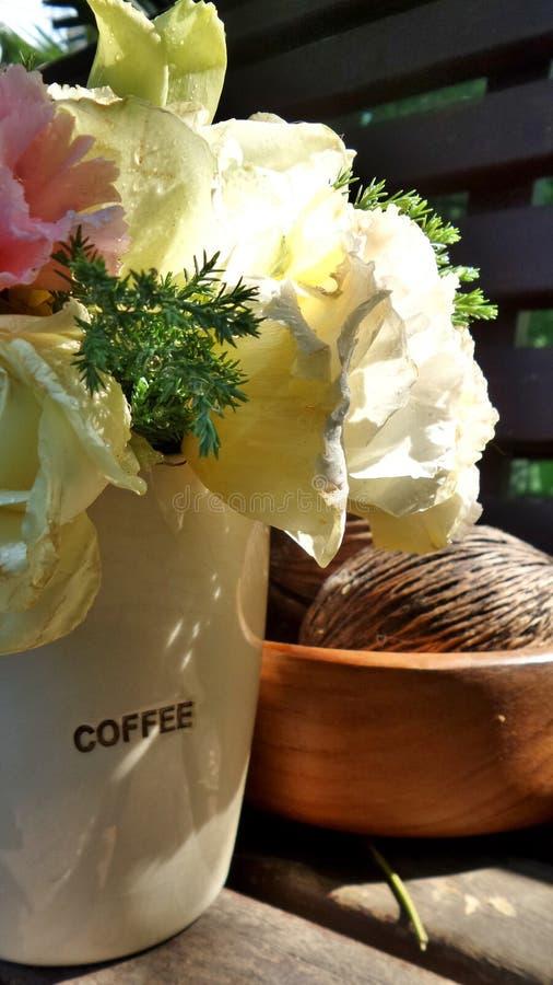 Цветки гвоздики стоковое изображение rf