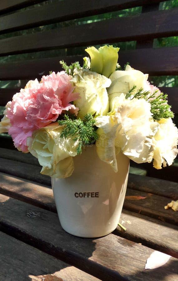 Цветки гвоздики стоковое фото rf