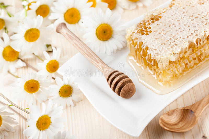 Цветки гребня и стоцвета меда стоковые изображения rf