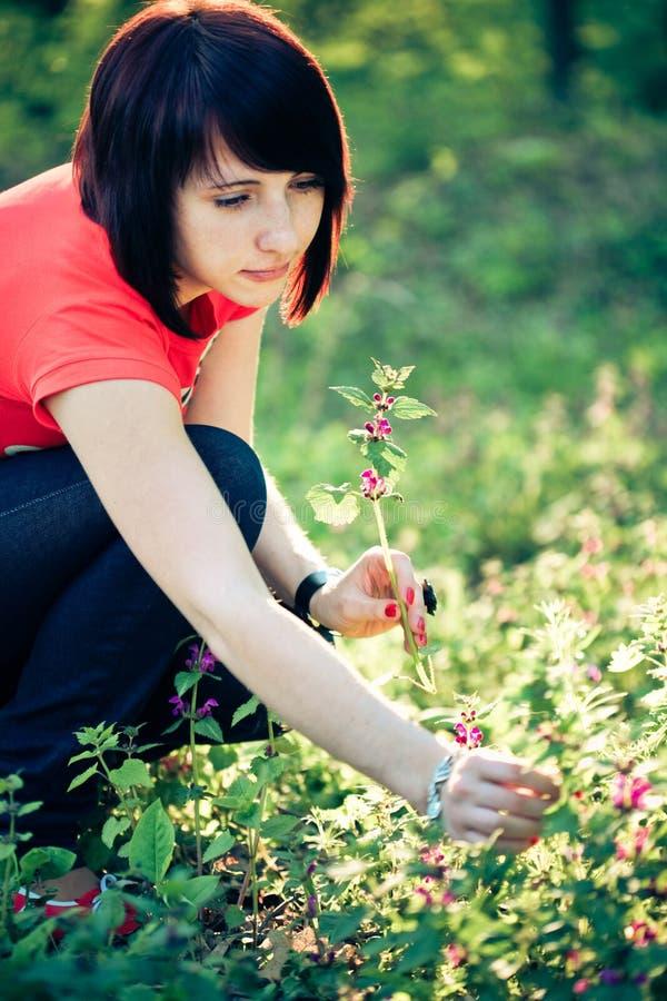 цветки держа милую женщину весны стоковое изображение