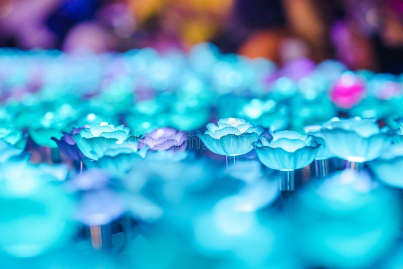 Цветки для создания красивого света стоковое фото rf