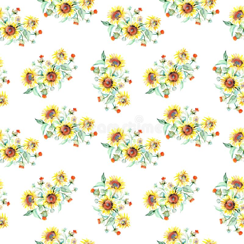 Цветки желтого солнцецвета флористические ботанические r r стоковое изображение rf