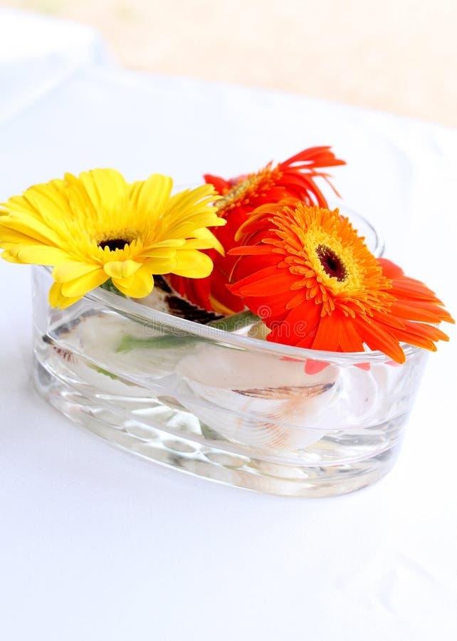 Цветки захода солнца стоковые изображения rf