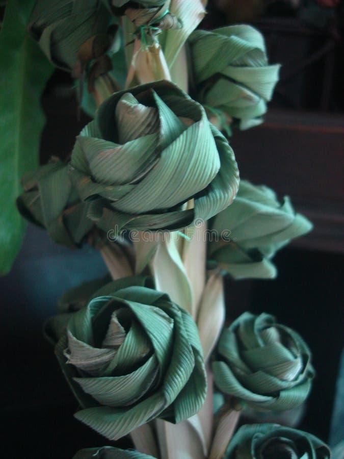 Цветки листьев стоковые фото