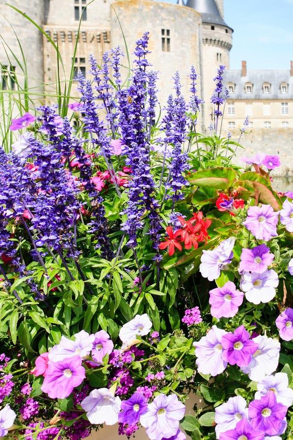 Цветки и замок de Пятнать-sur-Луара замка стоковое изображение