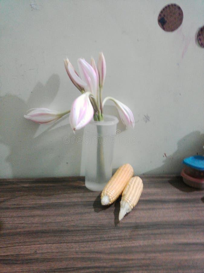 Цветки и зерна стоковое фото rf