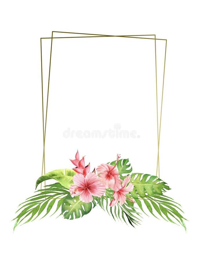Цветки и листья пинка рамки границы акварели тропические букет листьев и гибискуса monstera : иллюстрация штока