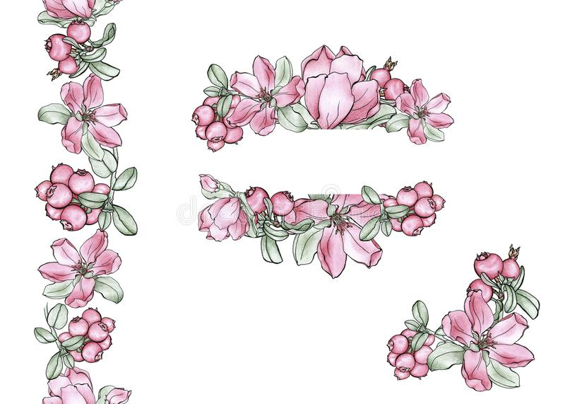 Цветки и ягоды в комплекте стоковое изображение