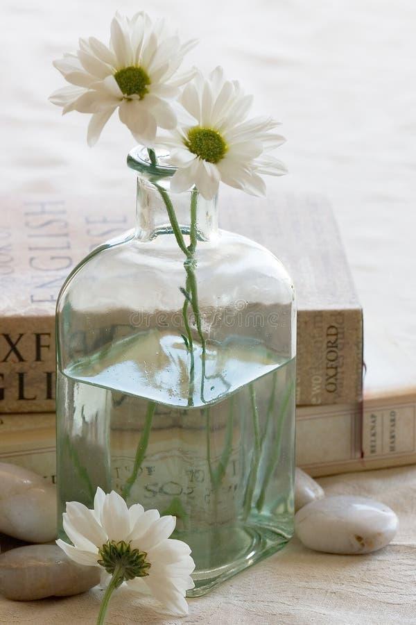 цветки книг стоковое фото