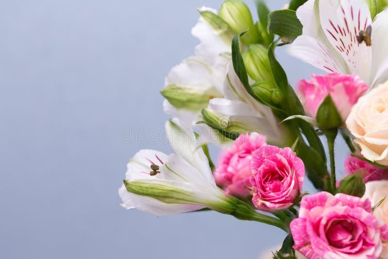 Цветки крупного плана красивые в пастельных цветах на голубой предпосылке Поздравительная открытка, день ` s мамы, приглашение св стоковая фотография