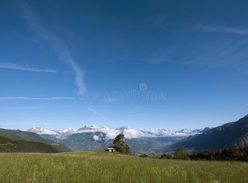 Цветки лета на поле с старыми амбаром и снегом покрыли горы ecrins des parc национальных за guillestre стоковая фотография