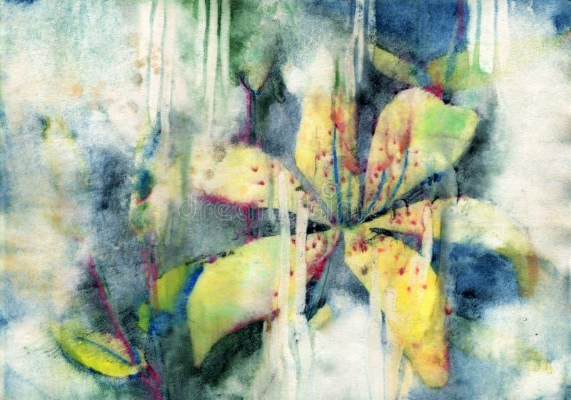 Цветки лилии картины иллюстрация вектора