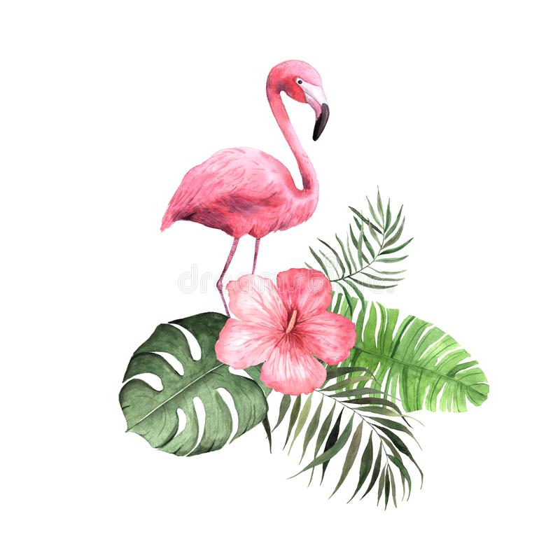 Цветки, листья и заводы акварели тропические стоковое изображение