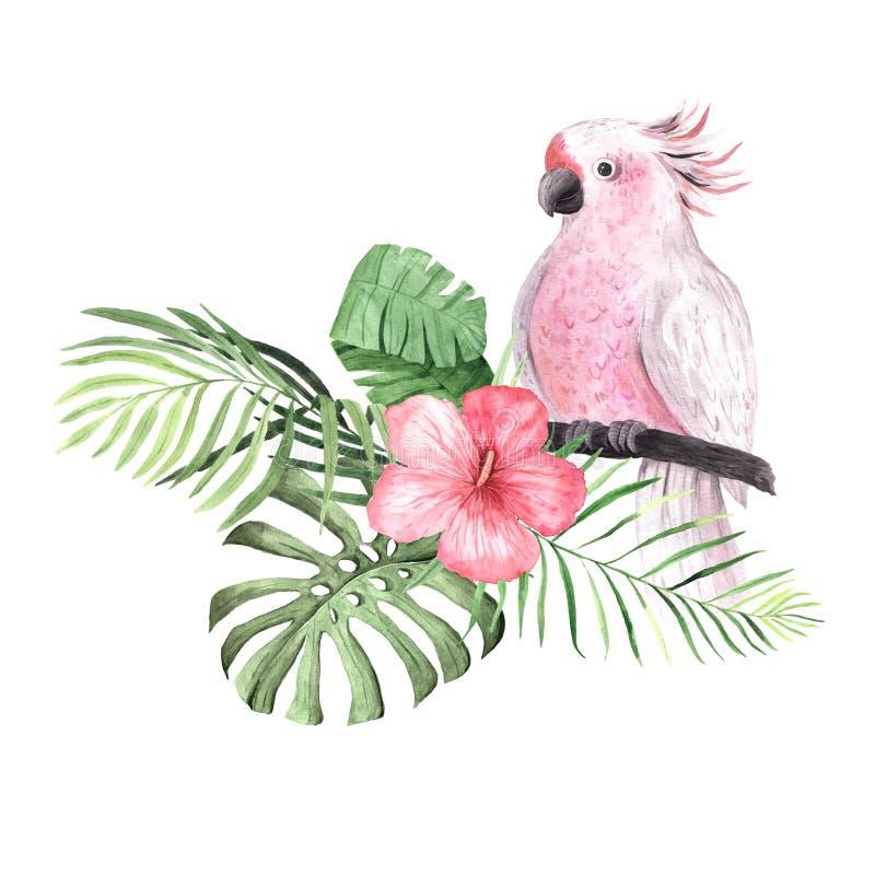 Цветки, листья и заводы акварели тропические стоковое изображение rf