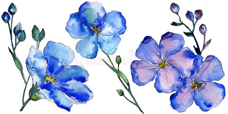Цветки льна акварели голубые Флористический ботанический цветок Изолированный элемент иллюстрации иллюстрация вектора