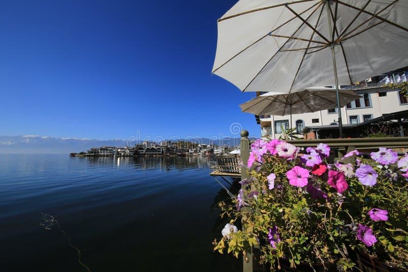 Цветки на озере Erhai Юньнань стоковое изображение rf