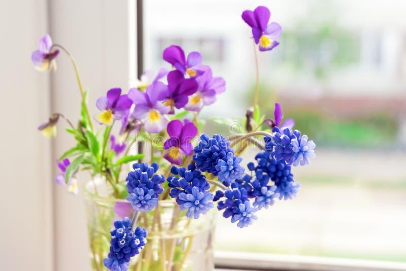 Цветки на окне Pansies и Muscari цветков на windowsill стоковая фотография rf