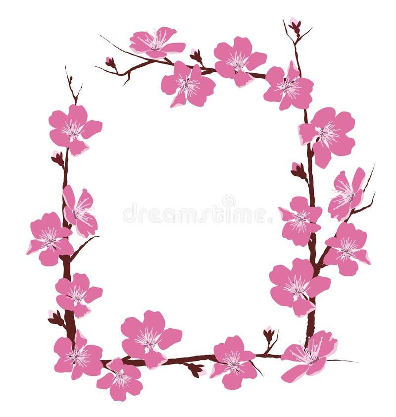 Цветки обрамляют на белизне