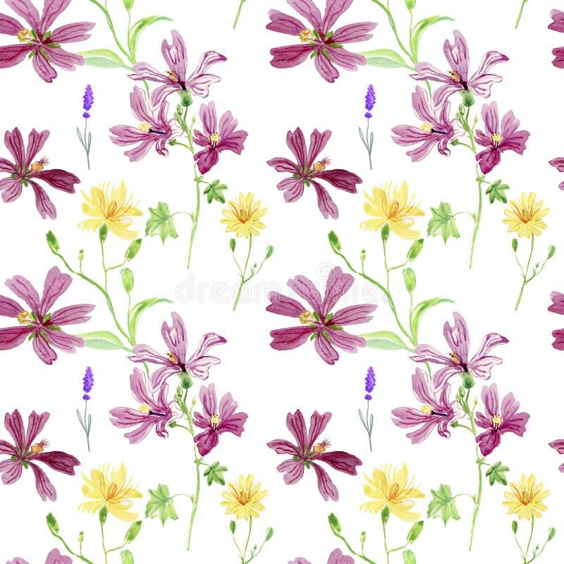 Цветки одичалого пинка и желтого цвета Картина акварели флористическая ботаническая, зеленая трава, желтый celandine цветка, семе иллюстрация вектора