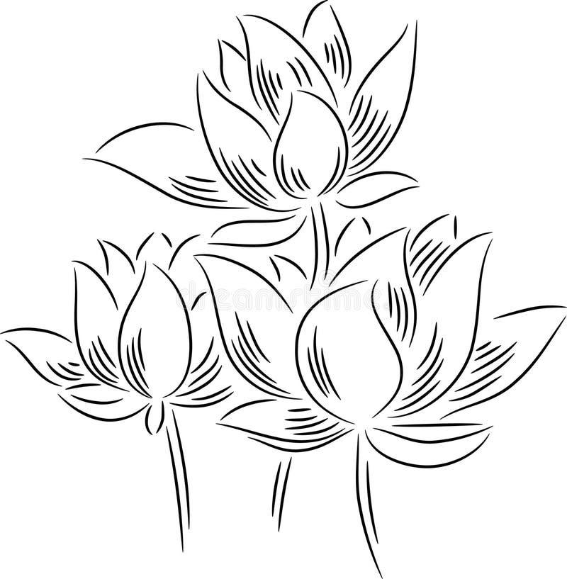 Цветки лотоса иллюстрация вектора