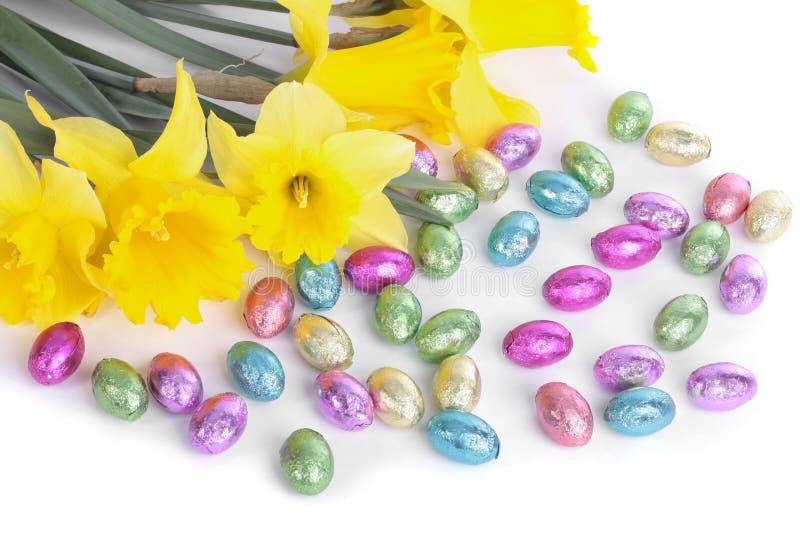 цветки пасхальныхя daffodil над белизной стоковые фотографии rf