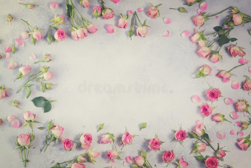 Цветки пинка и белой розы стоковое фото rf