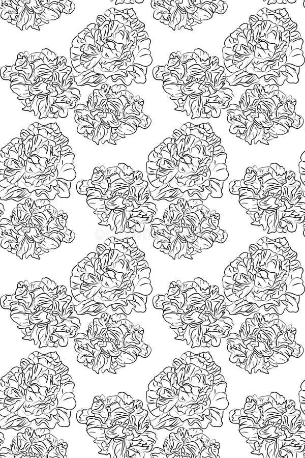 Цветки пионов безшовной картины черно-белые иллюстрация штока