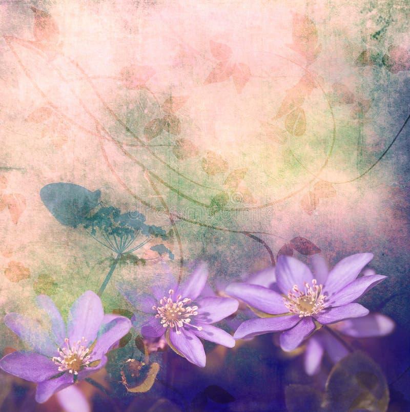 цветки предпосылки иллюстрация вектора