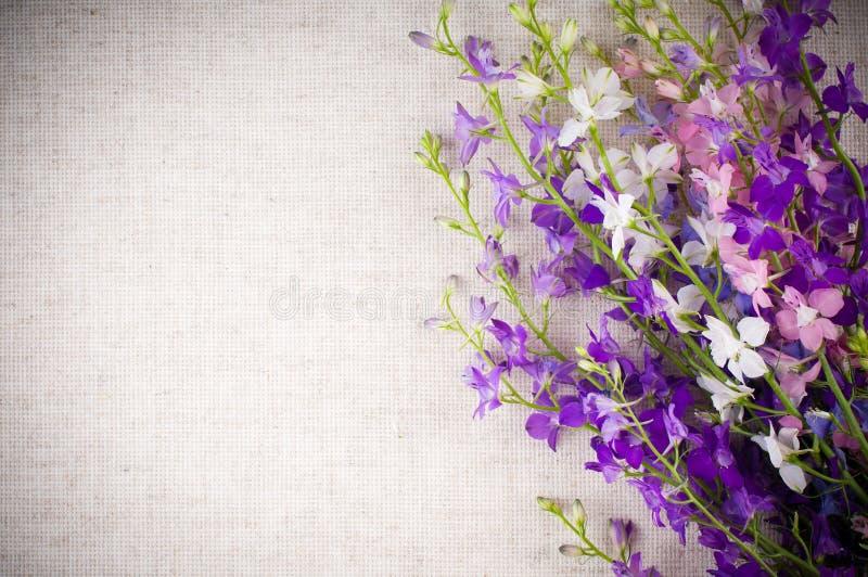 цветки предпосылки стоковое фото