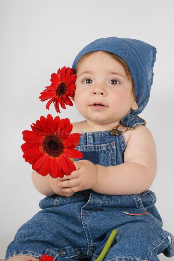 Download цветки ребенка стоковое изображение. изображение насчитывающей denim - 484609