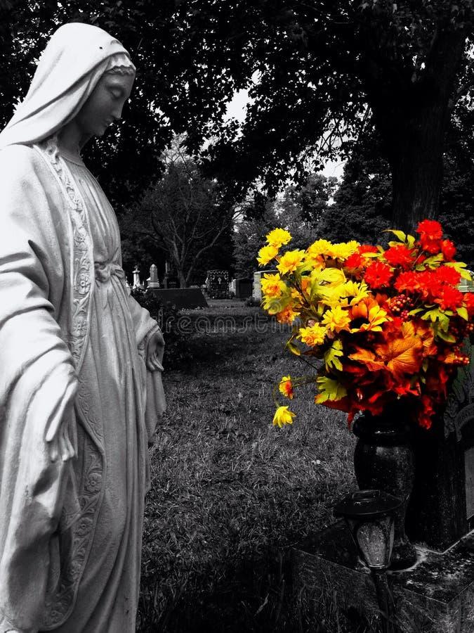 Цветки сигнала цветовой синхронизации стоковая фотография