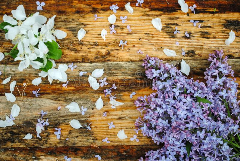 Цветки сирени и яблока на деревянном столе стоковое фото rf