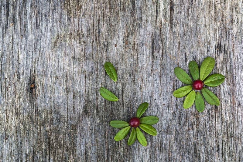 Цветки сделанные листьев и ягод стоковые изображения