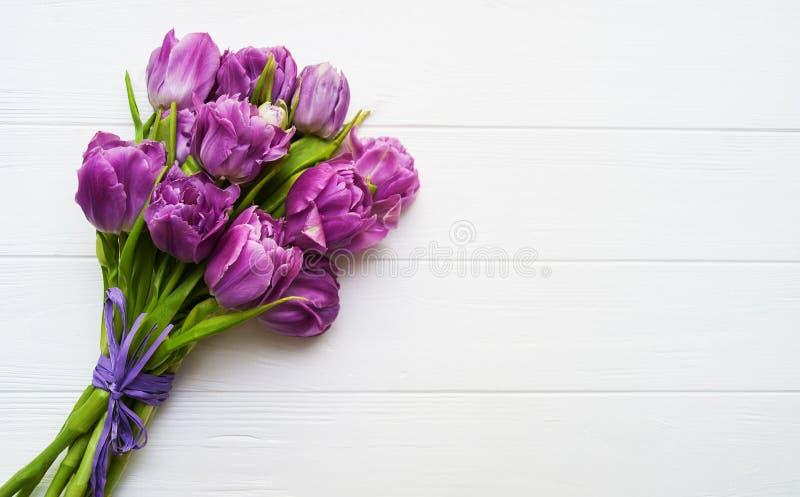 Цветки тюльпана весны стоковая фотография rf