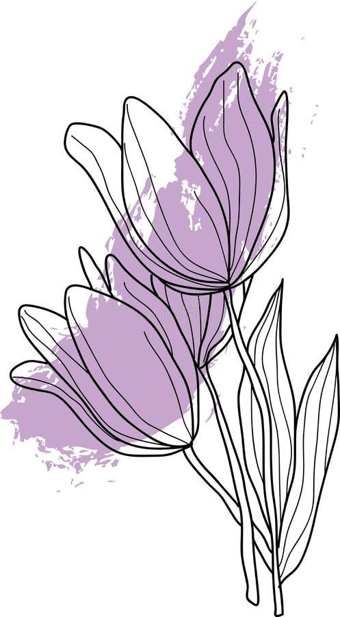 Цветки тюльпана в lineart иллюстрация вектора