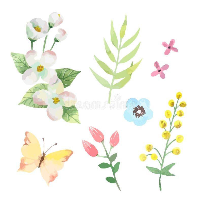 Цветки установили листья и ветви векторов watercolour иллюстрация штока