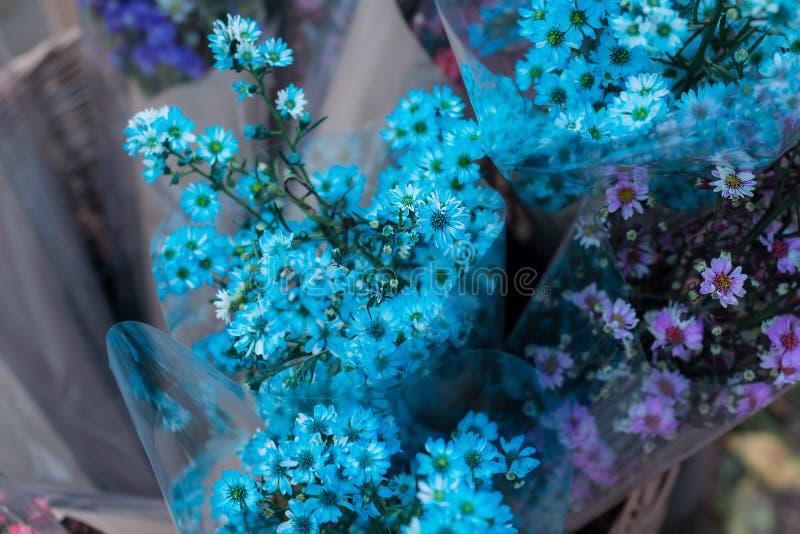 Цветки фонового изображения запачканные сине-фиолетовые стоковое фото rf