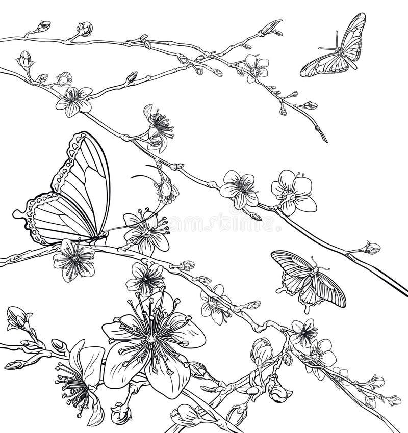 Цветки цветения персика вишни бабочек иллюстрация штока
