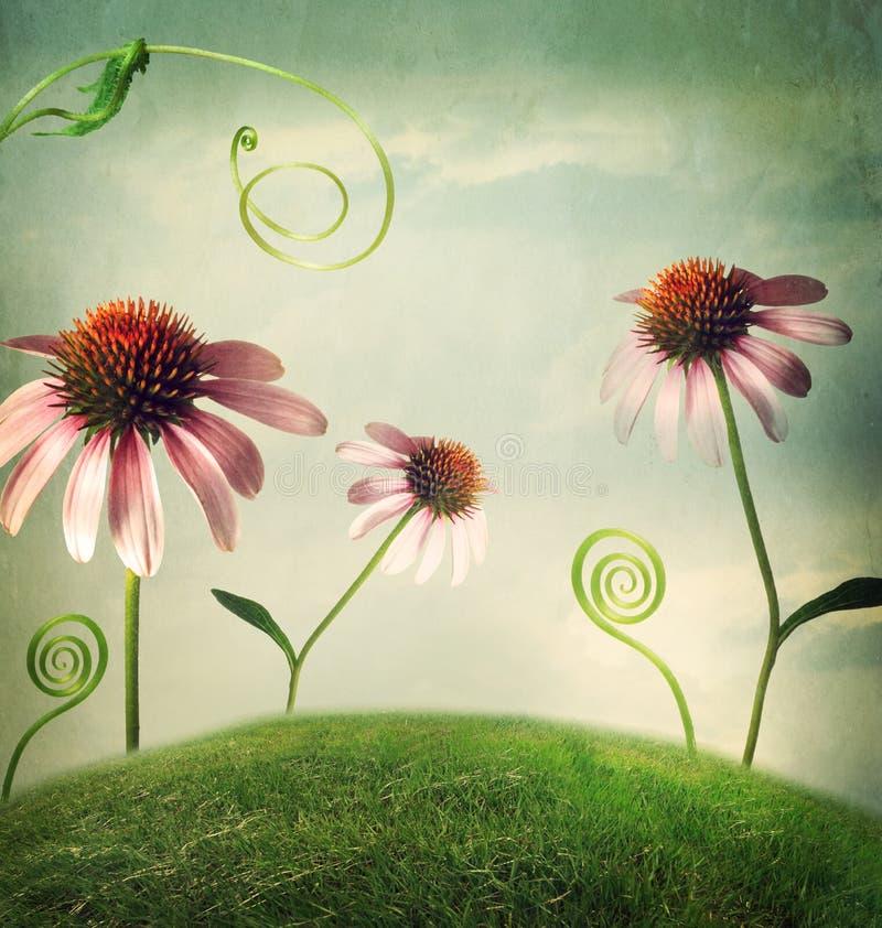 Цветки эхинацеи в ландшафте фантазии стоковое фото