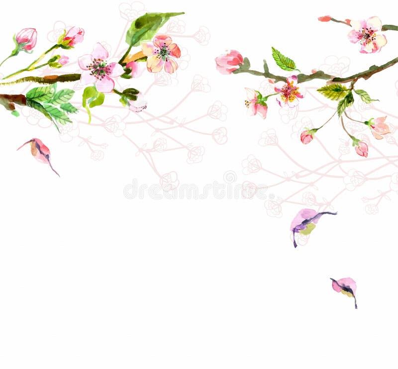 Цветки яблока акварели бесплатная иллюстрация