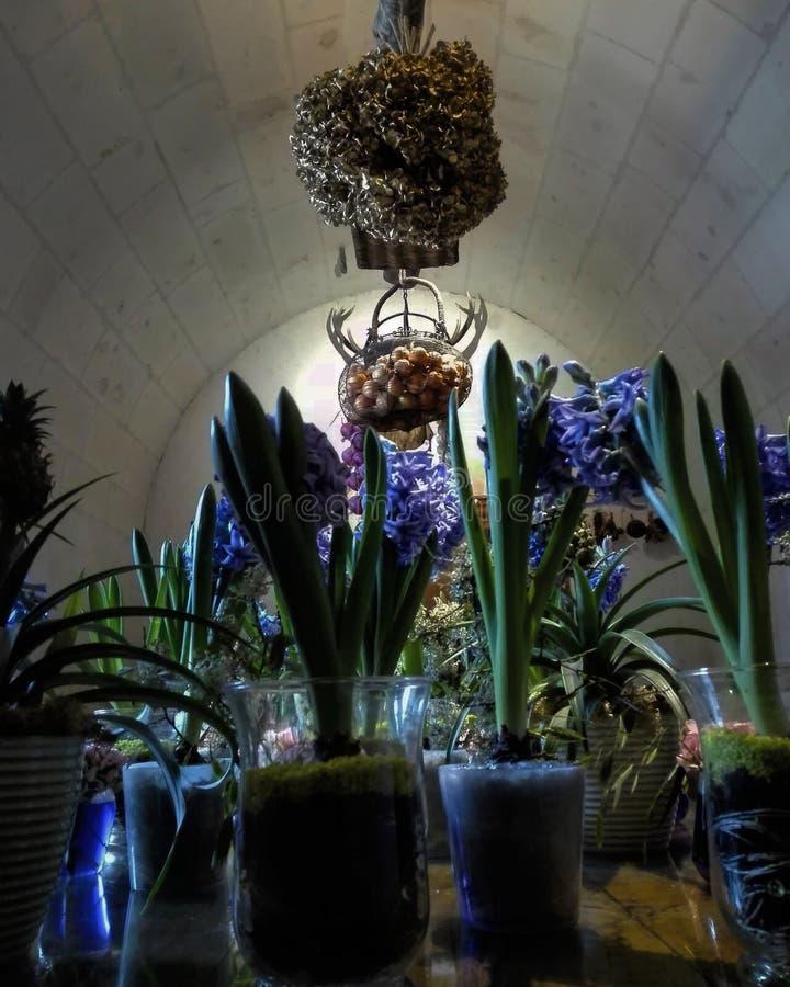 Цветки Chenonceau Франция стоковое изображение