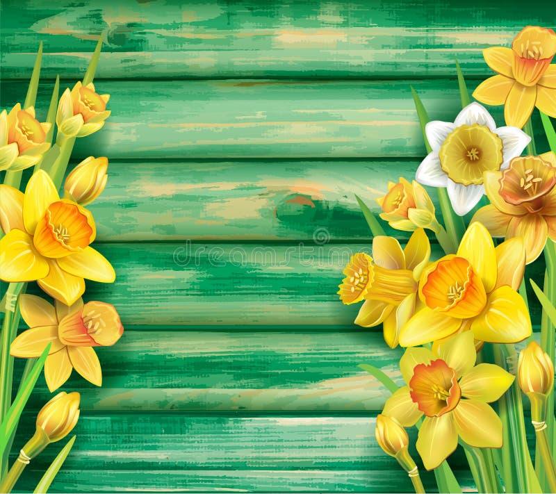 Цветки Daffodils на деревянной предпосылке иллюстрация штока