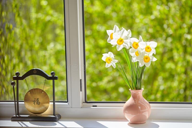 Цветки, daffodils на окне, стоковое изображение rf