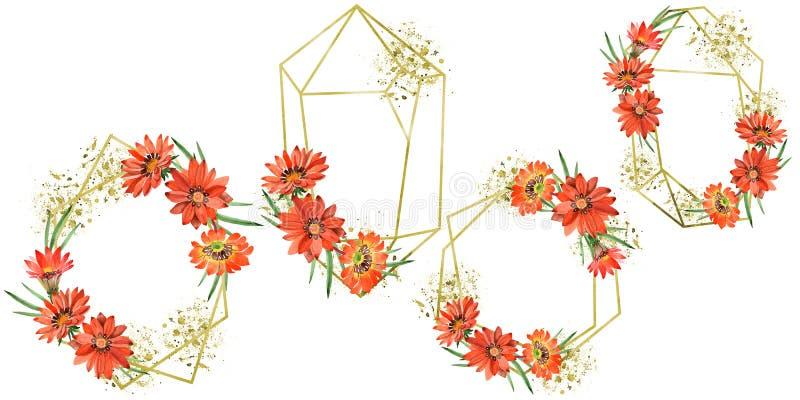 Цветки gazania акварели оранжевые Флористический ботанический цветок Квадрат орнамента границы рамки стоковое изображение