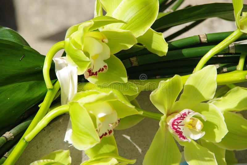 цветки wedding стоковая фотография
