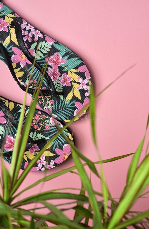 Цветк-сделанные по образцу кувырки стоковое фото rf
